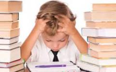 CHS Students Facing Homework Stress